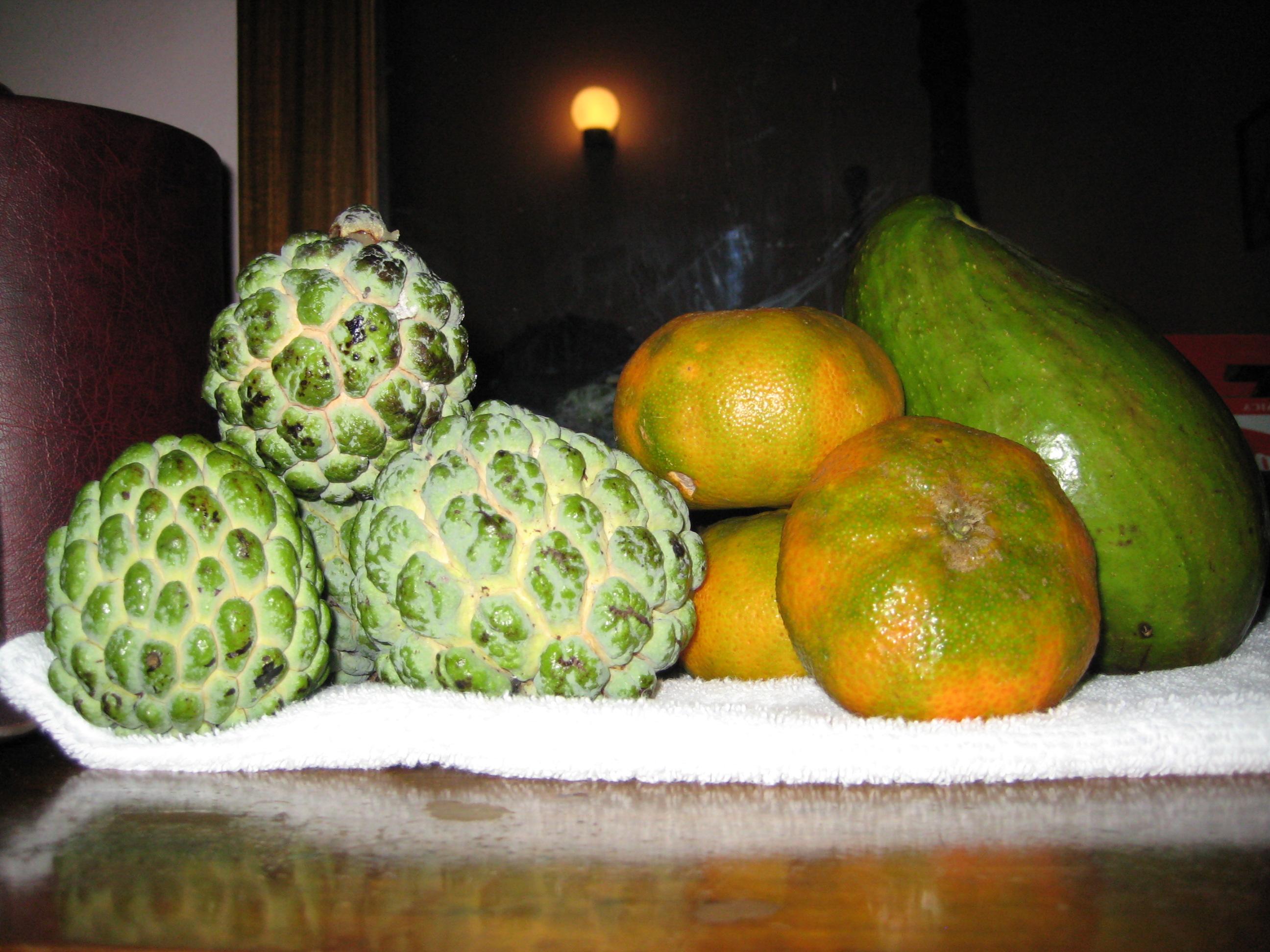 Sweetsop | Wonders of Jamaica